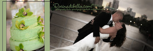 Rosina DiBello's Wedding & Portrait Photography Studio