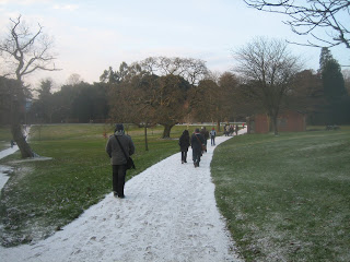 Snow in Singleton park