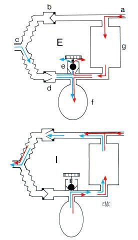taysir assistance circuit filtre. Black Bedroom Furniture Sets. Home Design Ideas