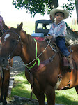 The Littlest Rider
