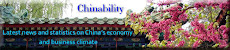 Chinability web site