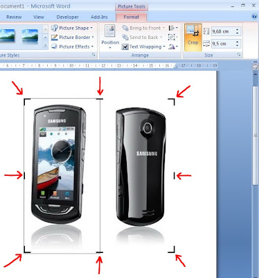 how to cut a picture in ms word 2007