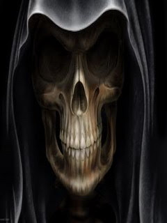 Samsung Corby Beautiful Skull Wallpaper