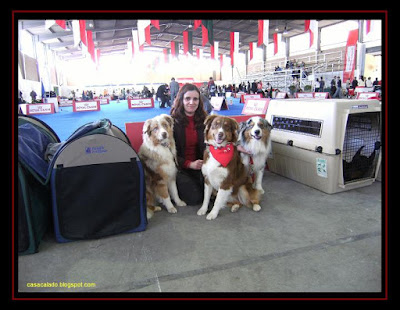 Dog Show Vila Franca de Xira