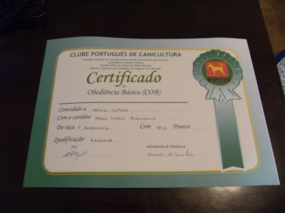 Certificado COB do CPC