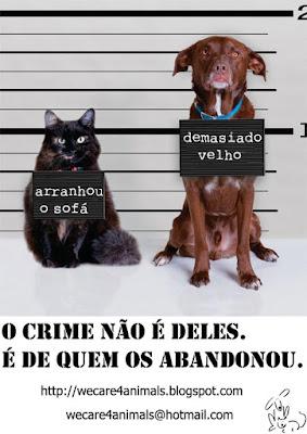Don't abandon animals
