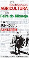 cnema 2010