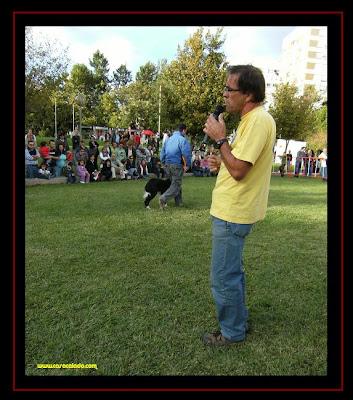 Pedro Araujo, Doggy Clube na demonstração de Obedience