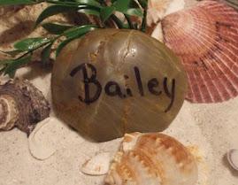 Bailey's Stone