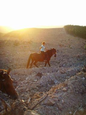 Sonnenuntergang 2009