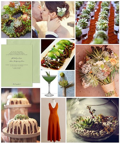 cactus inspired wedding