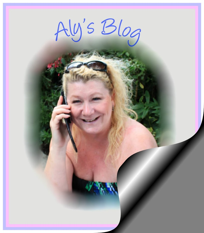 Welcome to Aly's Blog.