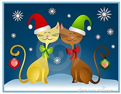 Christmas Cat Desktop Wallpapers, Xmas Cat Pets