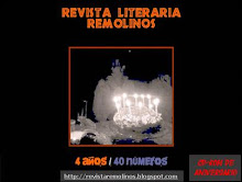 CD-Rom con las 40 ediciones de Remolinos
