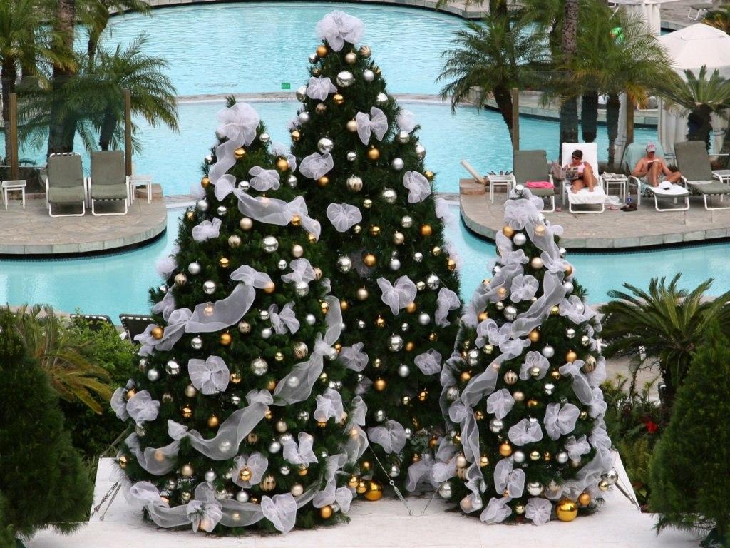 Božićna drvca Tropski-Bozic-download-besplatne-pozadine-slike-desktop-blagdani-praznici-bozic-i-nova-godina
