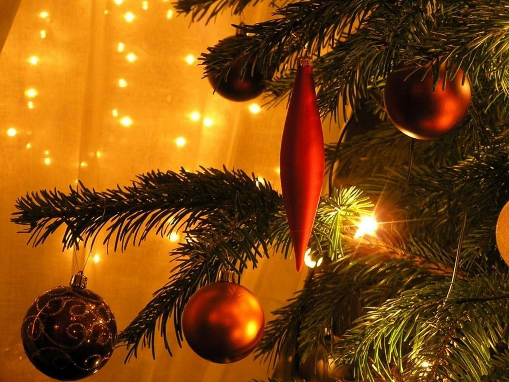 jelka za božić božićna slika download besplatna pozadina za