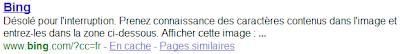 Bing dans les Serps Google
