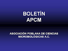 Boletn APCM