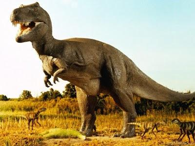dinozor-dinazor