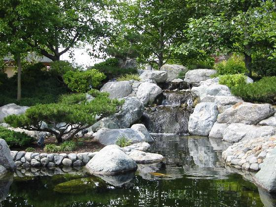 The meditation initiative meditation at the japanese for Japanese friendship garden
