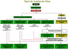 TIPOS DE ACEITE DE OLIVA