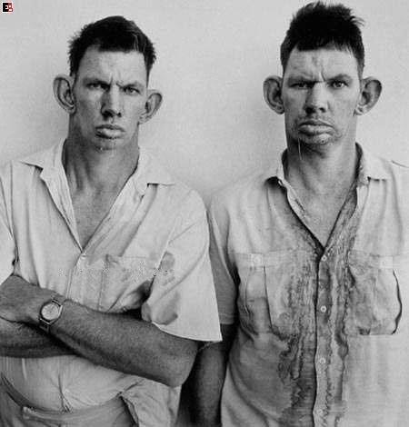 hillbillyboys.jpg