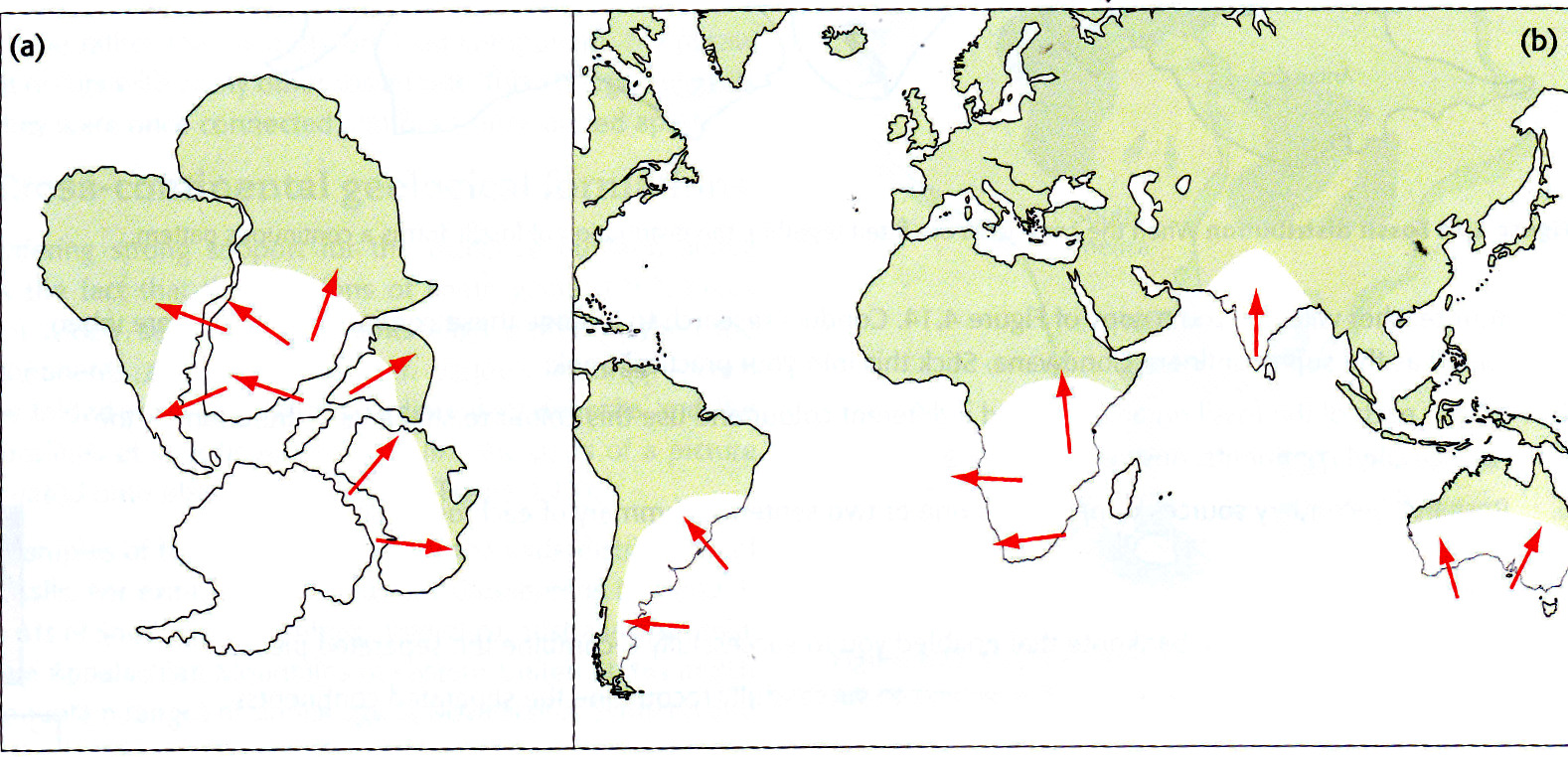 the widespread distribution of permo carboniferous glacial sediments in south america africa madagascar arabia india antarctica and australia was one