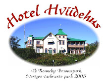 Hotel Hviidehus- Mitt arbete