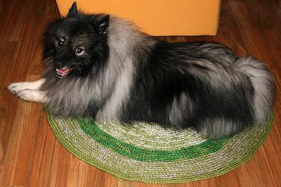 Hundeteppe