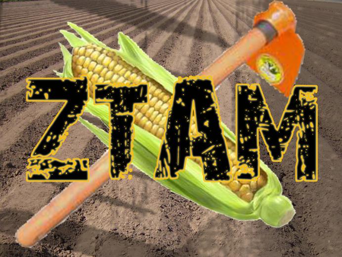 Emblema oficial dos ZTAM