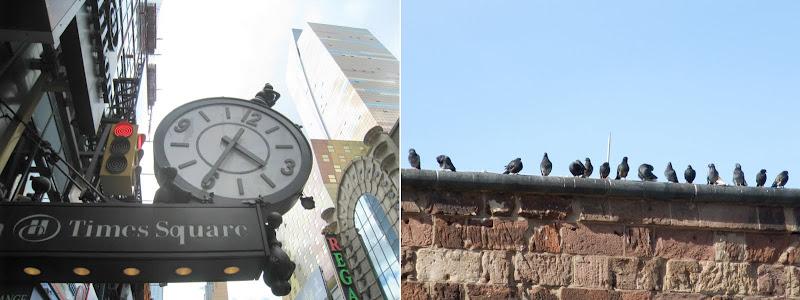 clock + birds