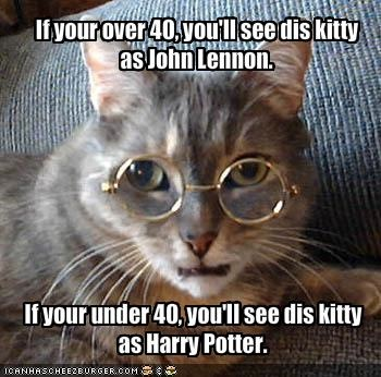 funny-pictures-cat-is-john-lennon-or-harry-potter.jpg