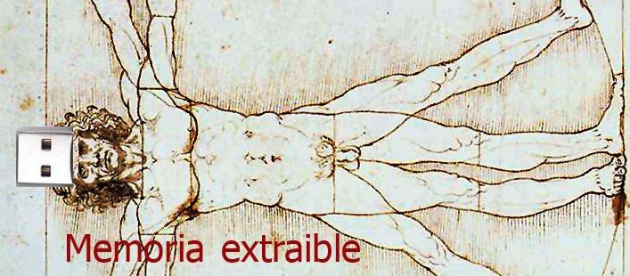 memoria extraible
