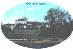 Castelul Nako