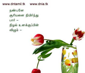 Related to friendship kavithai tamil sms collections
