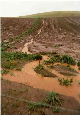 Ecologia erosi n - Suelos radiantes por agua ...
