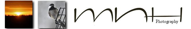 MNH Designs