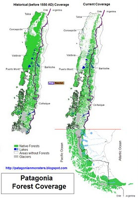 Patagonia Forest coverage