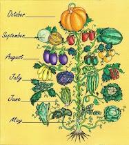 Vegetannual