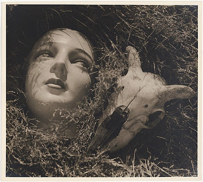 Doll's Head and Goat's Skull Max Dupain