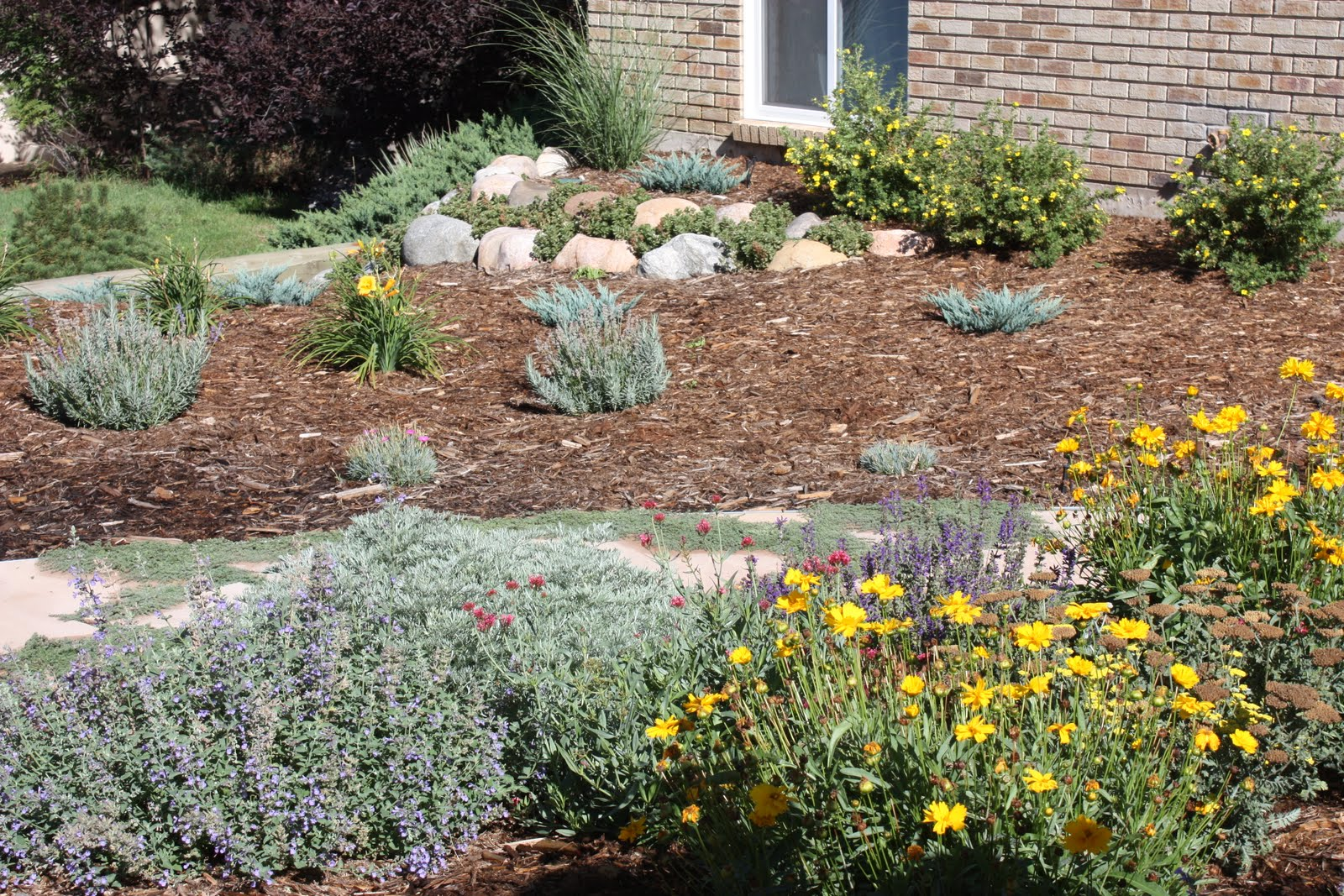 All the Dirt on Gardening: Can You Say Xeriscape?