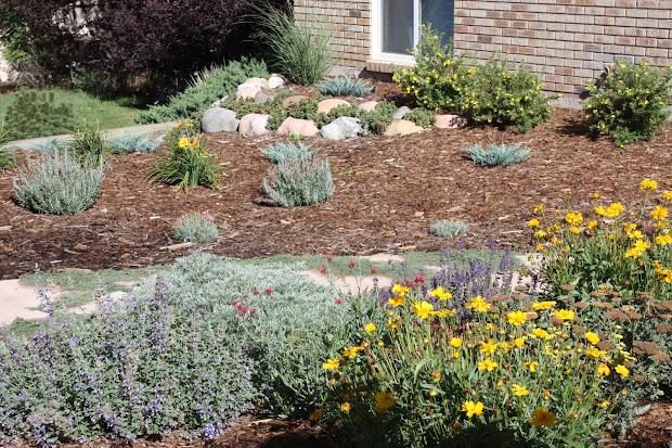 dirt gardening 08.10