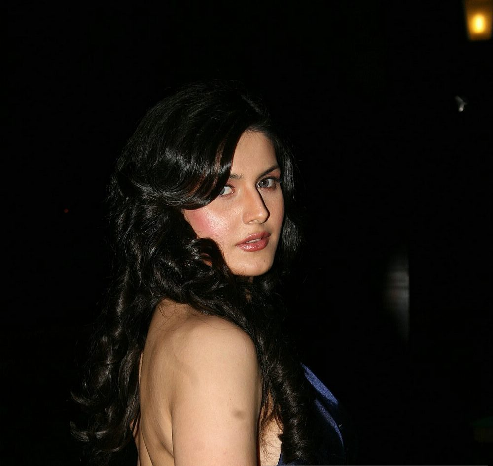 , Sexy Zarine Khan At The Great Women Achiever Awards