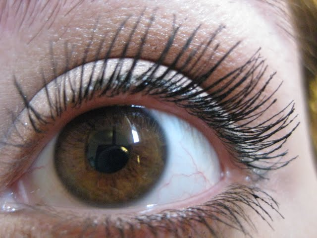Ulta Lash Icon Volume Mascara Review | Obsessed Makeup Addict