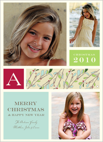 cool blue holly christmas card - Shutterfly Christmas Cards