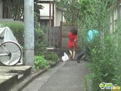 [japanese_04.jpg]