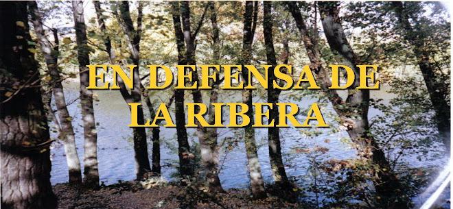 EN DEFENSA DE LA RIBERA