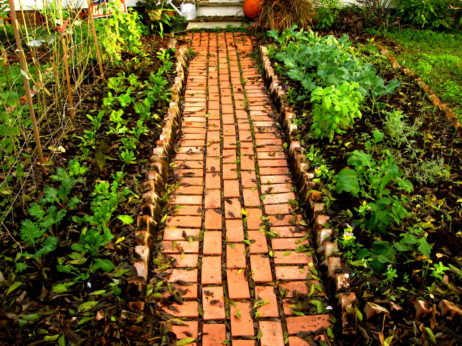 Garden path ideas latest home ideas for Garden path