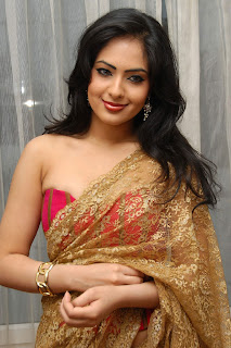 Nikesha Patel in cute Saree