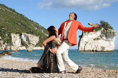 Photos Wanted Hot Romantic Stills Deeksha Seth Gopichand film pics